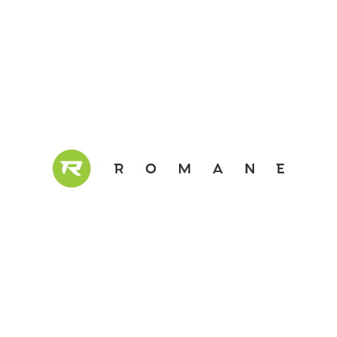 Romane Construction Logo Design
